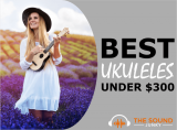 6 Best Ukuleles Under $300 In 2020