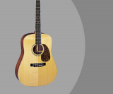 Martin D-16RGT Acoustic Guitar (Made in USA with Solid Tonewoods)