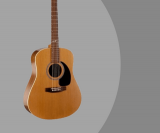 Seagull Artist Mosaic Review –  Acoustic Guitar With Solid Cedar Top