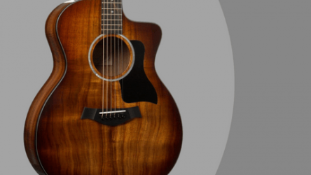 Taylor 224CE-K DLX Review – Koa Acoustic Electric Guitar (Excellent Craftsmanship)