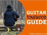 Guitar Tonewoods Guide: Which Tone Wood is Best for Acoustic (& Acoustic-Electric) Guitars